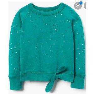 Gymboree Toddler Girl (3T) Sweatshirt
